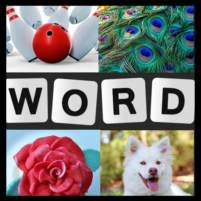 Word Picture IQ Word Brain Games Free for Adults   APK Mod 1.4.0