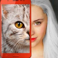 Kittens: what cat are you? prank 2.7 APK Mod